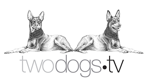 Two Dogs TV
